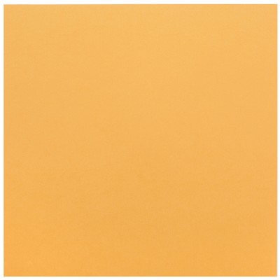 12X12 Core Foundations Cardstock, Tiger