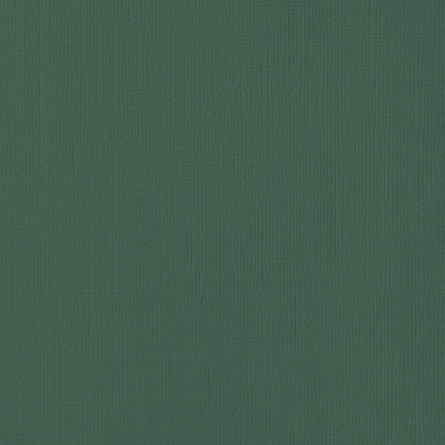 12X12 Textured Cardstock, Pine