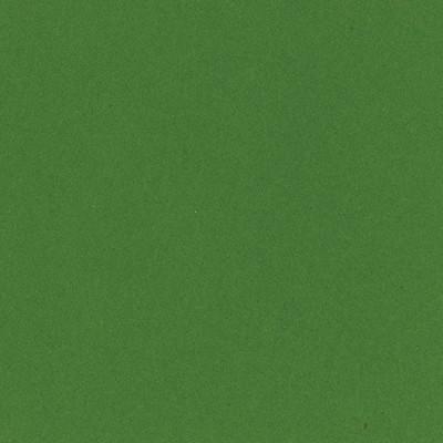 12X12 Smoothies Cardstock, Kiwi Crush