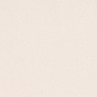 12X12 Smoothies Cardstock, Walnut Cream