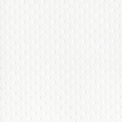 12X12 Dotted Swiss Cardstock, Salt