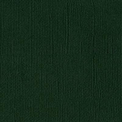 12X12 Mono Cardstock, Aspen (Canvas)