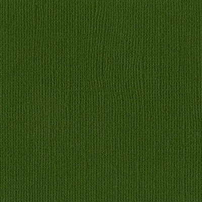 12X12 Mono Cardstock, Ivy (Canvas)