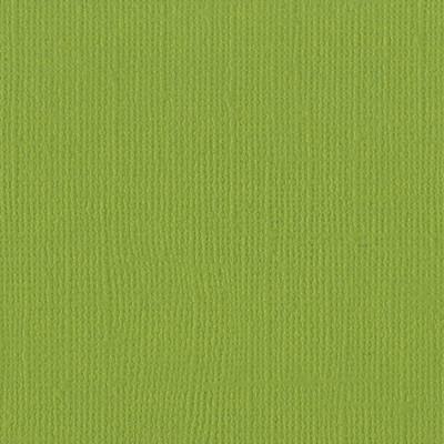12X12 Mono Cardstock, Parakeet (Canvas)