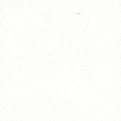 12X12 Orange Peel Cardstock, White Op