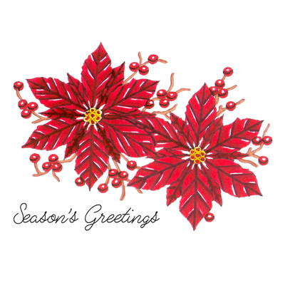 Stamp & Color Outline Stamp, DTH - Poinsettia Greetings