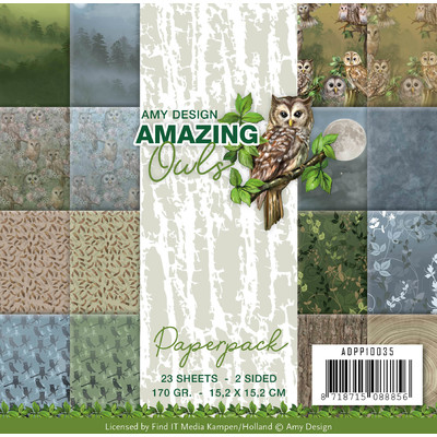 Amy Design 6X6 Paper Pack, Amazing Owls