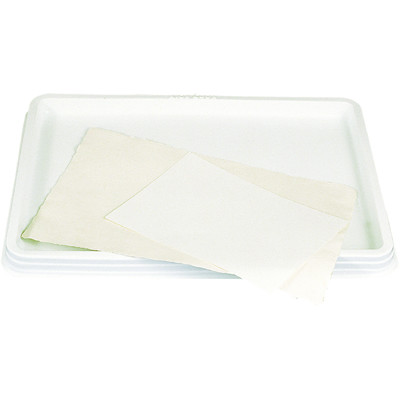 Paper Soaking Tray, Large & Lightweight