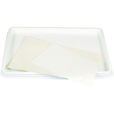 Paper Soaking Tray, Tray in Carton