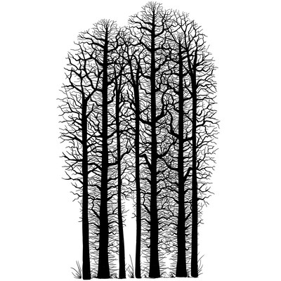 Clear Stamp, Forest Scene