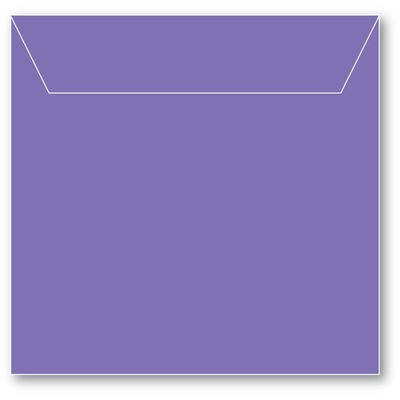 Storage Pouch, Small - Violet