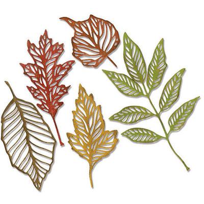 Thinlits Die, Skeleton Leaves (5pk)