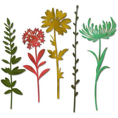 Thinlits Die, Wildflower Stems #1 (5pk)