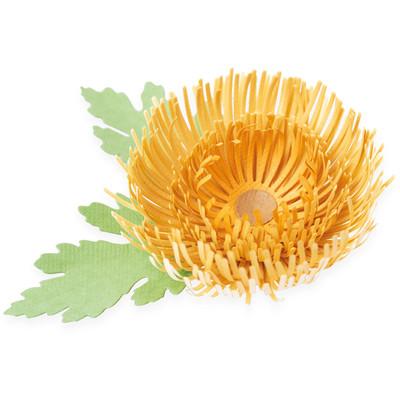 Thinlits Die Set, Chrysanthemum (5pk)