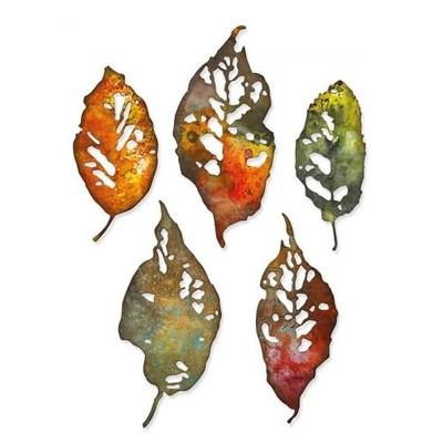 Thinlits Die Set, Leaf Fragments (5pk)