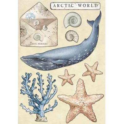 A5 Colored Wooden Shapes, Arctic Antarctic - Arctic World