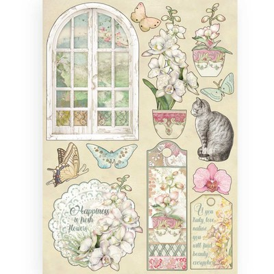 A5 Colored Wooden Frames, Orchids & Cats - Window