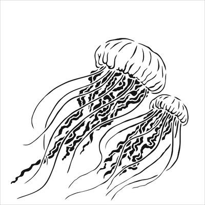 6x6 Stencil, Jellyfish